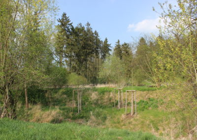 Hundeschule Curriculum Canis Weimar - Holzdorf